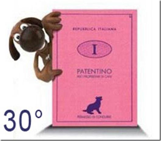 Patentino-cani30