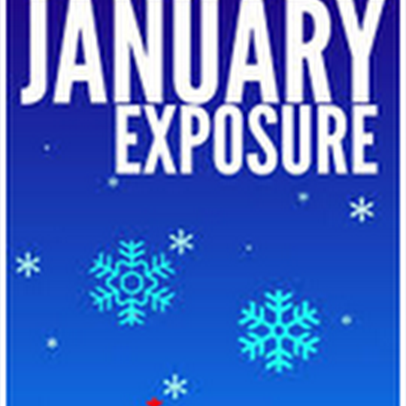 Orangeberry Book of the Day - January Exposure by Sunny Benson