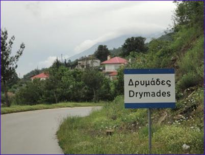drymades