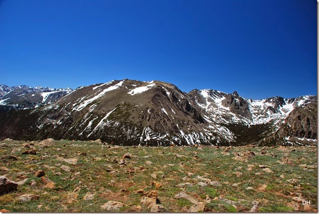 06-19-14 A Trail Ridge Road RMNP (103)