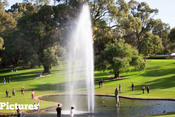 fountain-kings-garden-perth-pictures-by-jacky