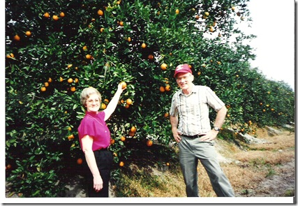 scan1994-96 016