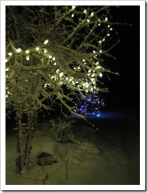 20120224_snow-lights-snowman_007
