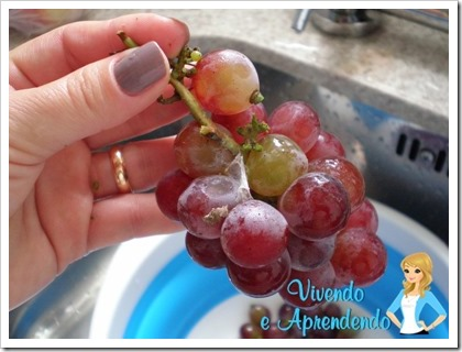 Higienizando as uvas1