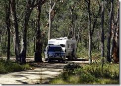 Camping Blatherarm Park NSW