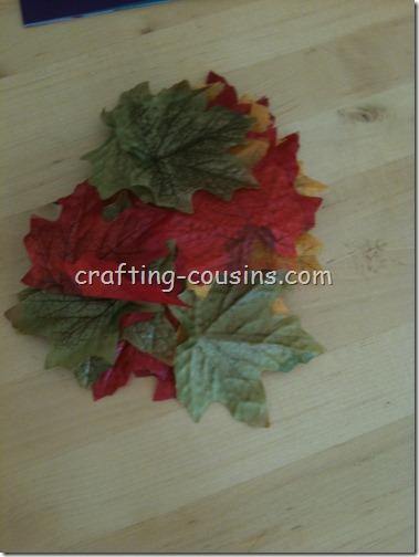 Fall Tree (4)