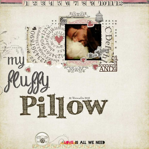 my-fluffly-pillow_web