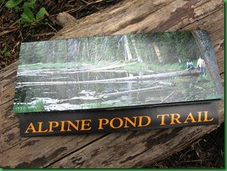 Alpine Pond 007