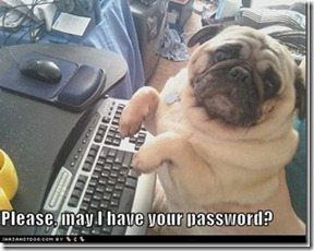 funny-dog-pictures-please-may-i-have-your-password_thumb[1]