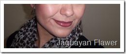 Rachel Weisz 4 Bvlgari (17)