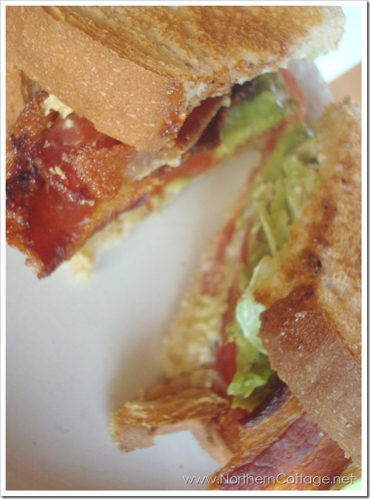blta sandwich @ NorthernCottage.net