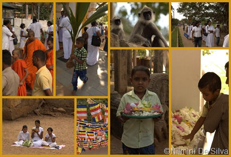 2012 12 14 Anuradhapura