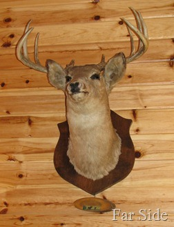Deer Upstairs