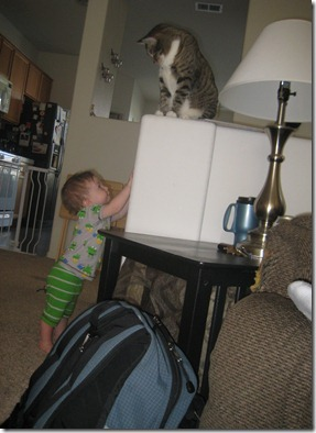 07 24 11 - Here kitty kitty (2)