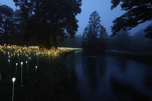 bruce munro 3