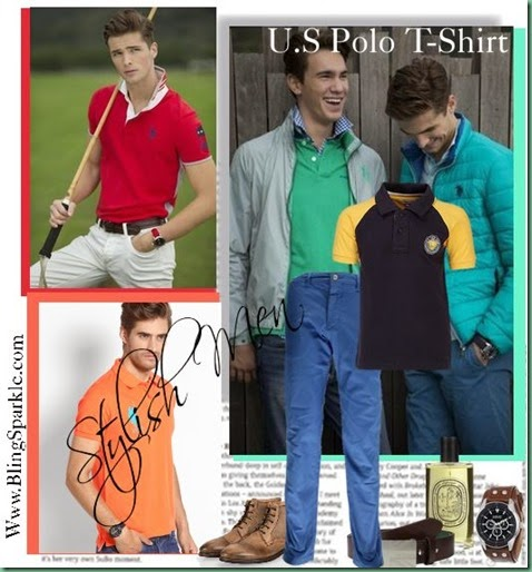 Polo T shirt Fashion basics for men
