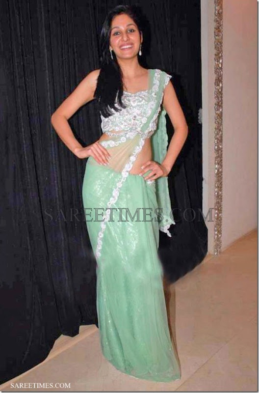 Pooja_Chopra_Green_Shimmer_Saree