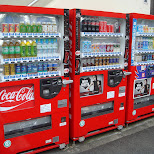vending machines in Tokyo, Tokyo, Japan