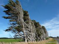 Wind an der Südküste