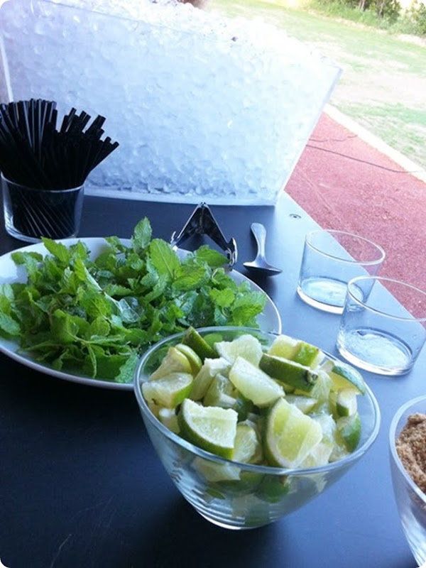 CATERING MOJITOS