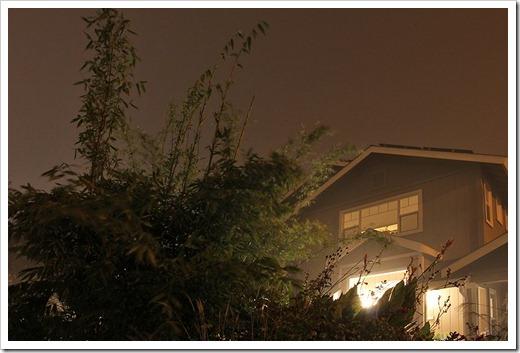 111127_night2