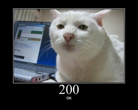 HTTP-Status-Cats-02