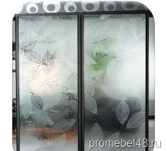 Шкаф-купе со стеклом химического травления 3