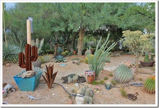 succulents and more visit to bb cactus farm, tucson, az part, southwest garden decor, southwest outdoor decor, southwest outdoor decorating ideas