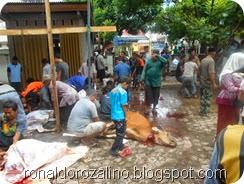 Suasana Pemotongan Hewan Kurban di Masjid Raya Kota Teluk Kuantan (25)