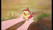 08 l'oiseau