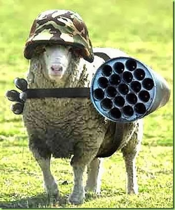well armed sheep fighting for liberty in a 2 wolf world