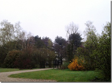 2012-04-10 19.53.35