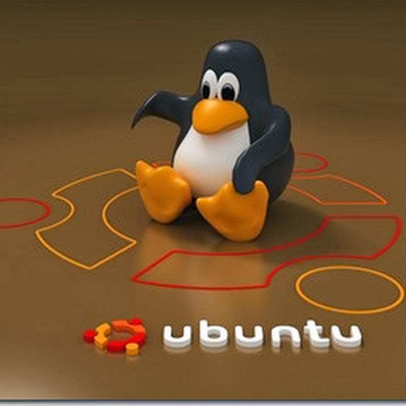 Continuan las polemicas, según DistroRank Ubuntu sigue siendo la distro más usada