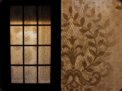window_lace_curtain