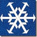 Snowflake 5  v4