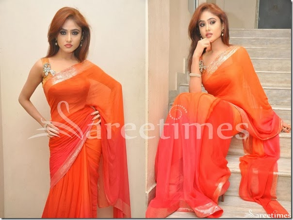 Sony_Charishta_Dual_Color_Saree