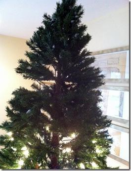 Christmas 2011_12