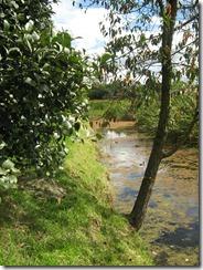 Humedal Santa María