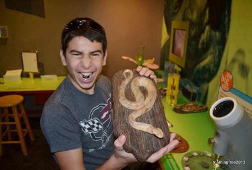 snakes - yuk!