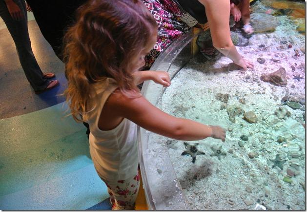 Sea Life Aquarium 230