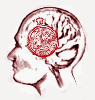 Ritmi biologici e cronobiologia orologio nel cervello