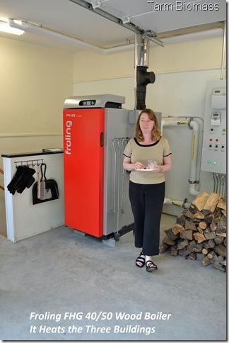 Froling FHG Wood Boiler 1
