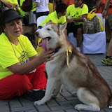Pet Express Doggie Run 2012 Philippines. Jpg (244).JPG
