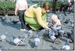 cb_c_r_pigeons