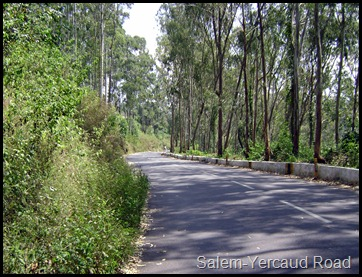 Salem-Yercaud Road