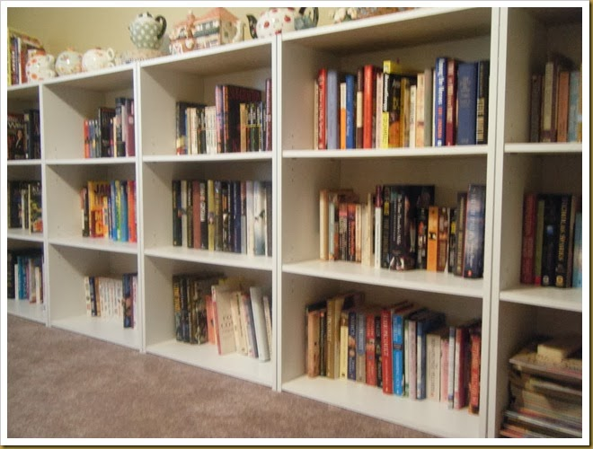 upstairs book shelves (3)