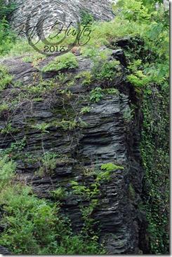 rock-hill