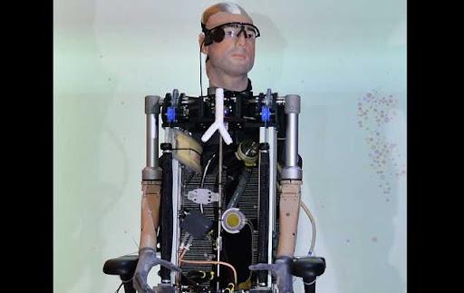 manusia bionik