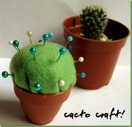 cactus porta aghi