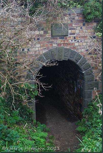 40-tunnel